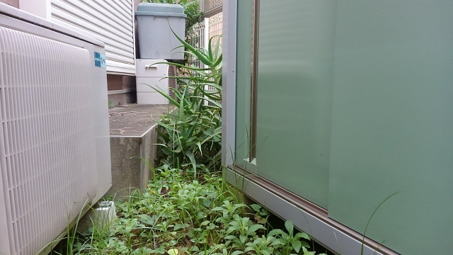 エアコンの不調、もしかして室外機周辺の雑草かもしれません!